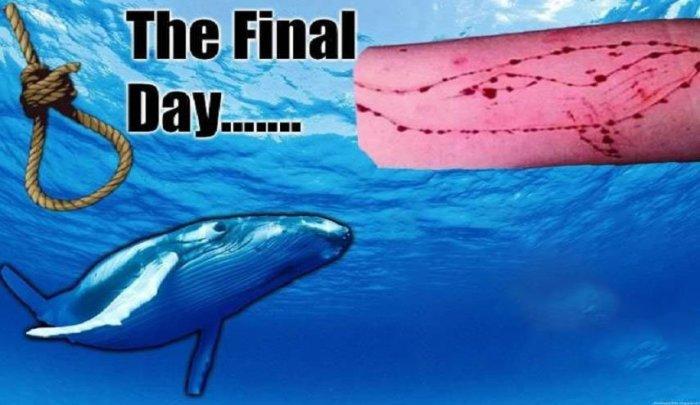 الأمن يستبعد انتحار فتاتين بسبب الحوت الأزرق