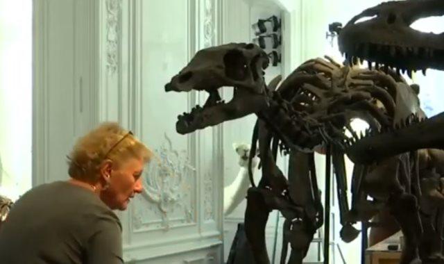 شاهد.. هياكل ديناصورات للبيع بمزاد علني في باريس
