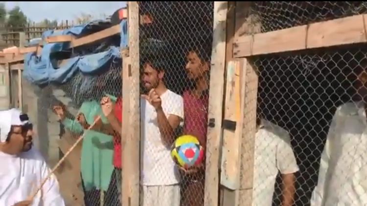 بالفيديو.. إماراتي يحتجز عمالا هنودا في أقفاص حيوانات والشرطة تتدخل