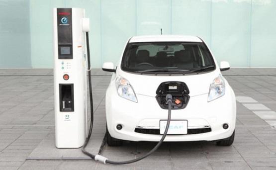 مجلس الوزراء يوافق على إعفاء المركبات الكهربائية الموجودة في الحرة