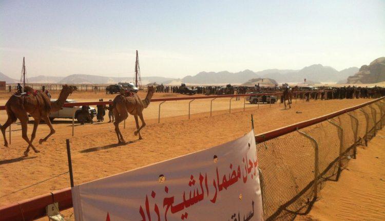 مهرجان الشيخ زايد لسباق الهجن الثاني عشر 2019 ينطلق يوم غدا الجمعة بوادي رم بالأردن