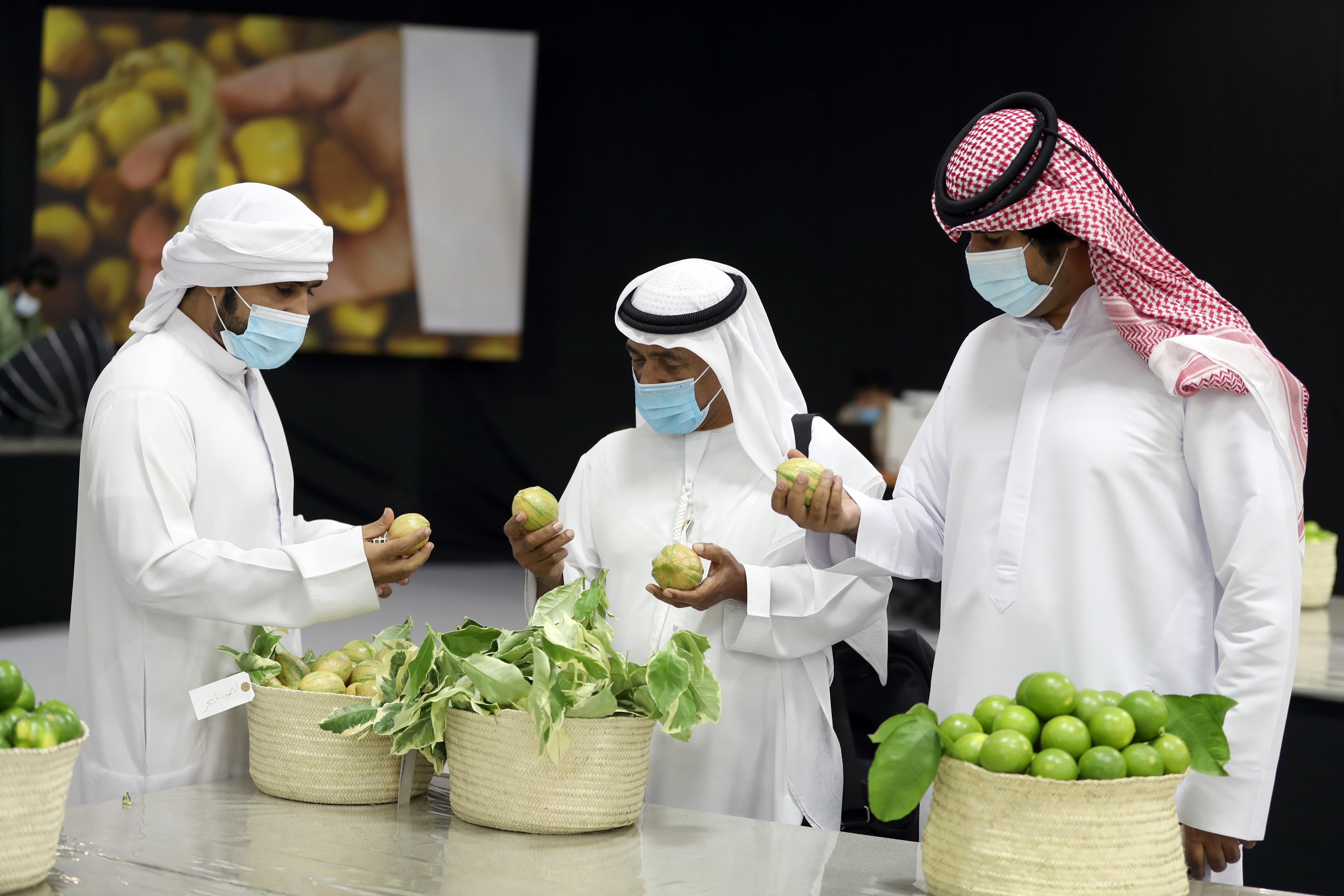 أبوظبي للزراعة والسلامة الغذائية تنظم محاضرات توعوية افتراضية في مهرجان ليوا للرطب